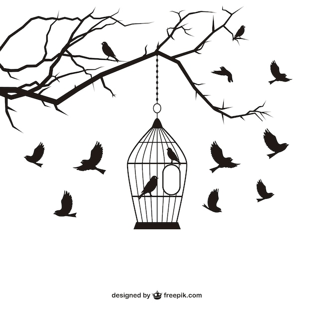 Vintage Bird Cage Vector Stock Photos and Images  alamycom