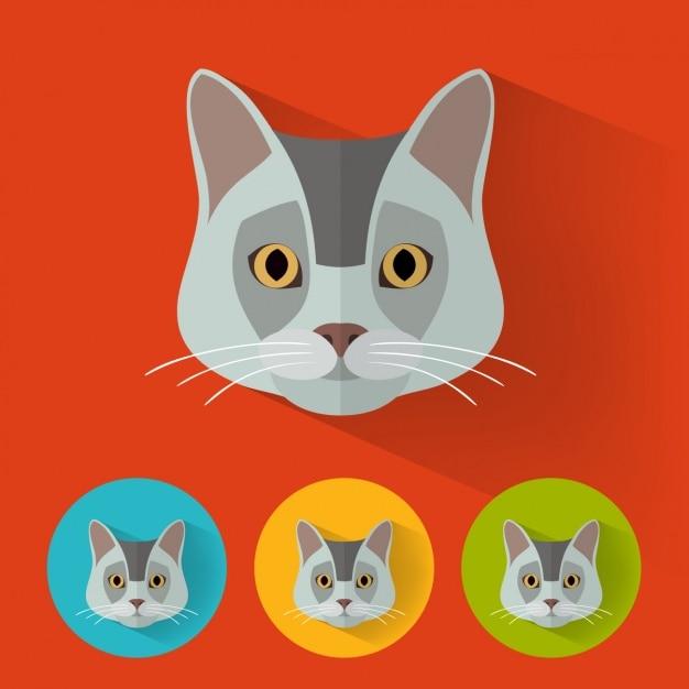Black Cat Design Visual Language that Enhances your Brand!
