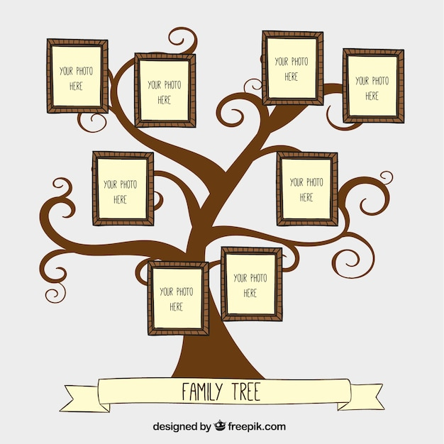 Hand drawn family tree Vector Free Download