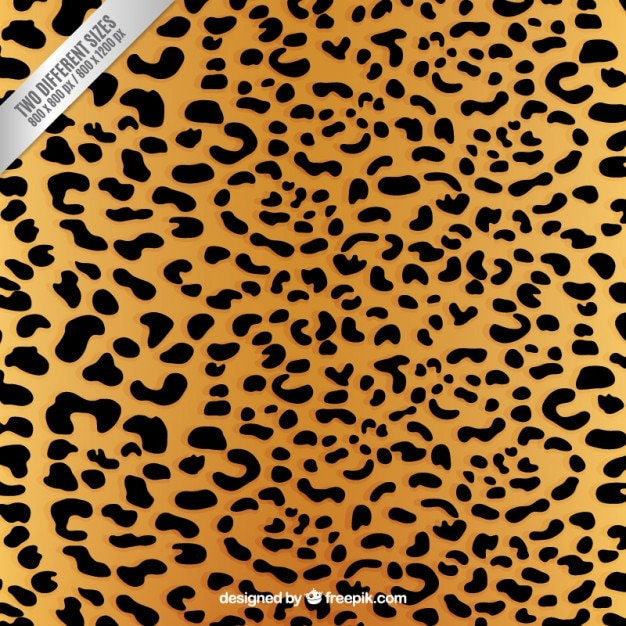 For These Orthodox Jewish Designers Leopard Print is the