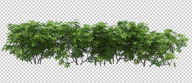 3d Renderowania Drzewa Pędzla Na Białym Tle Premium Psd