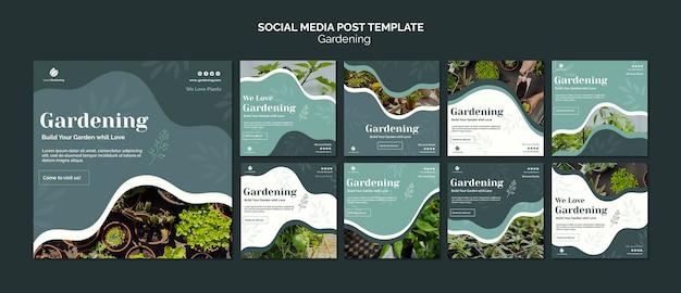 Kolekcja Postów Na Instagramie Dla Ogrodnictwa Darmowe Psd
