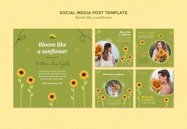 Kolekcja Postów Na Instagramie Ze Słonecznikami I Kobietą Premium Psd