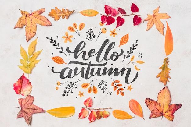 Płasko leżała jesienna dekoracja z liśćmi Darmowe Psd