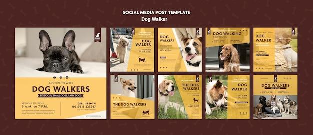 Post W Mediach Społecznościowych Wyprowadzający Psa Premium Psd