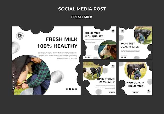 Posty Ze świeżych Mleka W Mediach Społecznościowych Darmowe Psd
