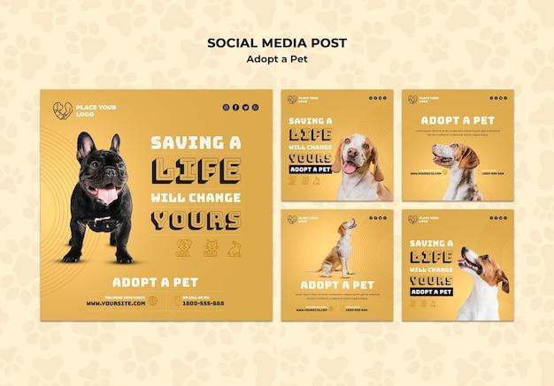 Przyjęcie Szablonu Posta W Mediach Społecznościowych Dla Zwierząt Domowych Darmowe Psd