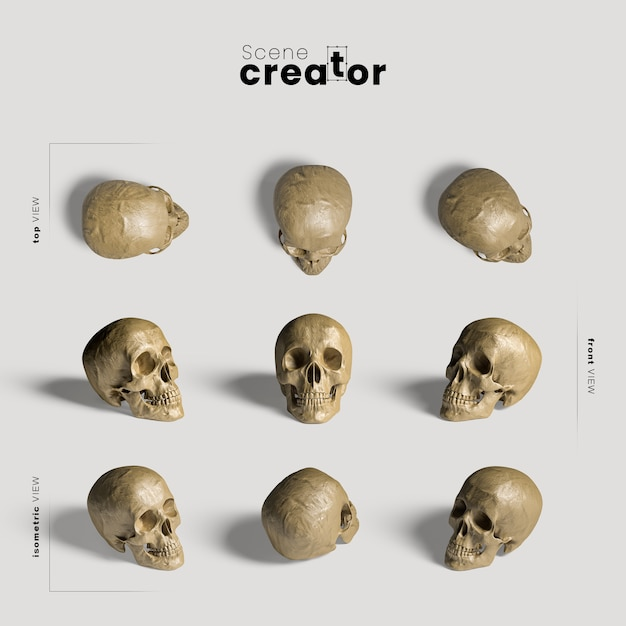 Realistyczna różnorodność czaszek twórców scen halloween Darmowe Psd