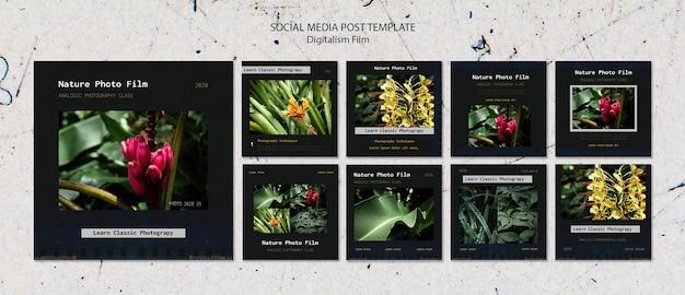 Szablon Filmu Fotograficznego Natury W Mediach Społecznościowych Darmowe Psd