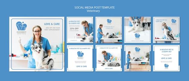 Szablon Postu W Mediach Społecznościowych Kliniki Weterynaryjnej Darmowe Psd