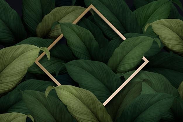 Tropikalne tło liści Darmowe Psd
