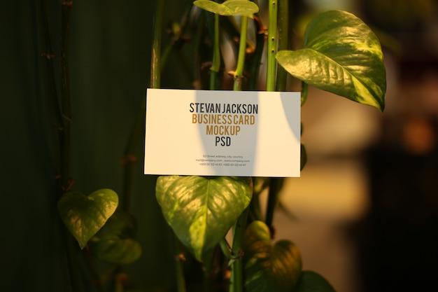 Wizytówka Na Makieta Liścia Psd Premium Psd