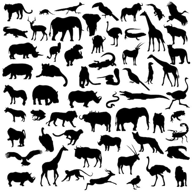 Afryka Safari Zwierzęta Dzikie życie Sylwetka Clipart Premium Wektorów