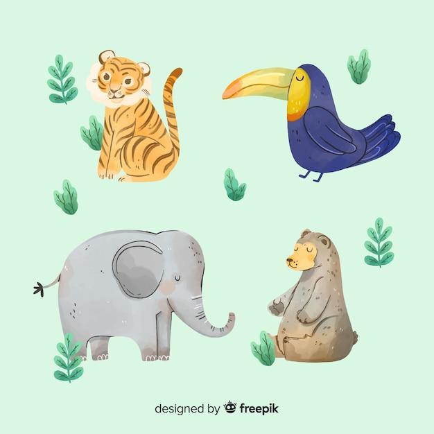 Akwarela Egzotyczna Kolekcja Zwierząt Tropikalnych Darmowych Wektorów
