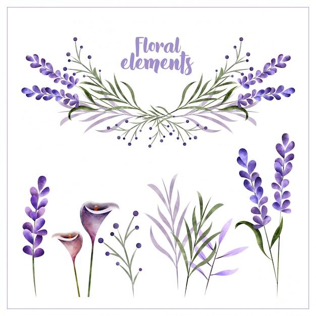 Akwarela Elementy Dekoracji Kwiatowych Premium Wektorów