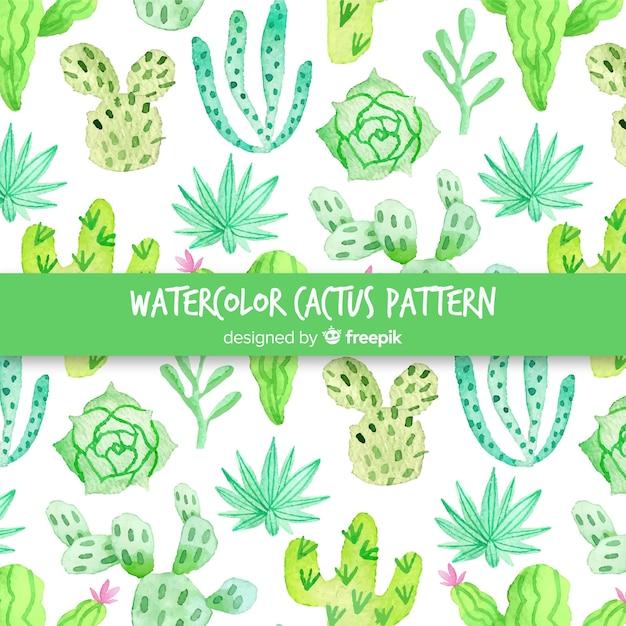 Akwarela kaktus wzór Darmowych Wektorów