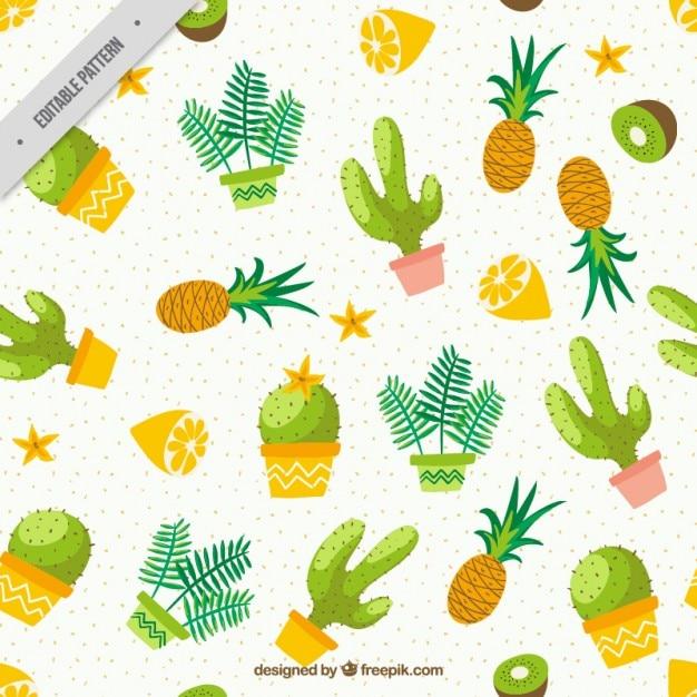 Akwarela Kaktus Z Owoców Wzór Darmowych Wektorów