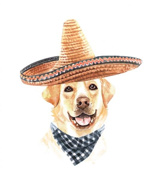 Akwarela Labrador Z Meksykańskim Kapeluszem I Szalikiem W Kratę. Premium Wektorów