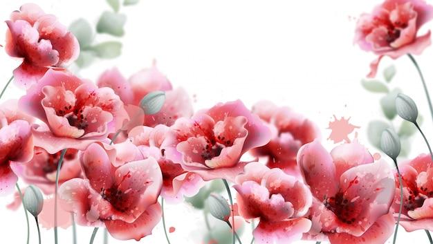 Akwarela Różowe Kwiaty Maku Premium Wektorów