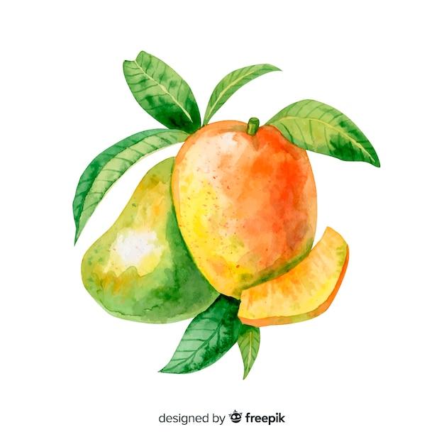 Akwarela tropikalne mango z liśćmi Darmowych Wektorów