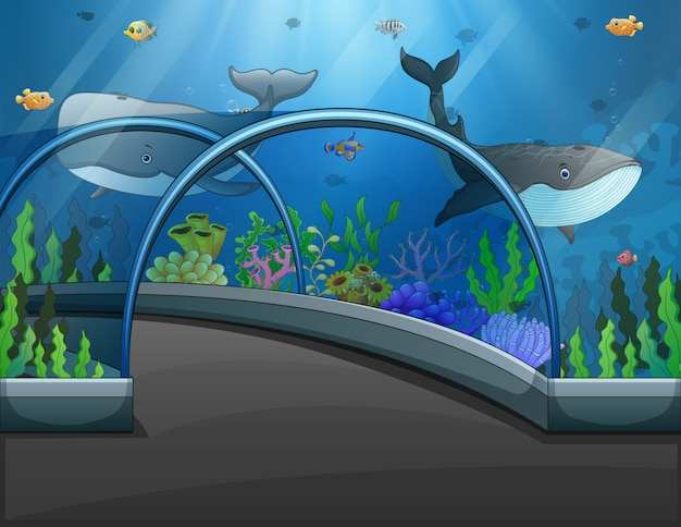 Akwarium Scena Z Dennymi Zwierzętami Ilustracyjnymi Premium Wektorów