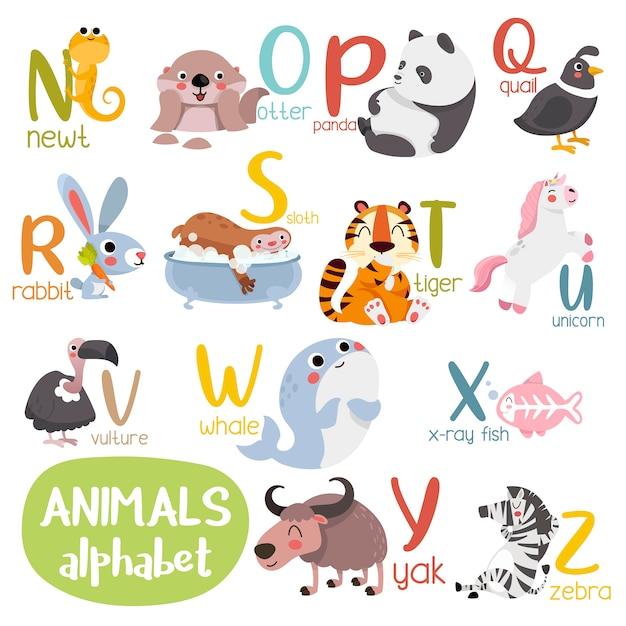 Alfabet zwierząt grafika od n do z. śliczny alfabet zoo ze zwierzętami w stylu kreskówki. Premium Wektorów