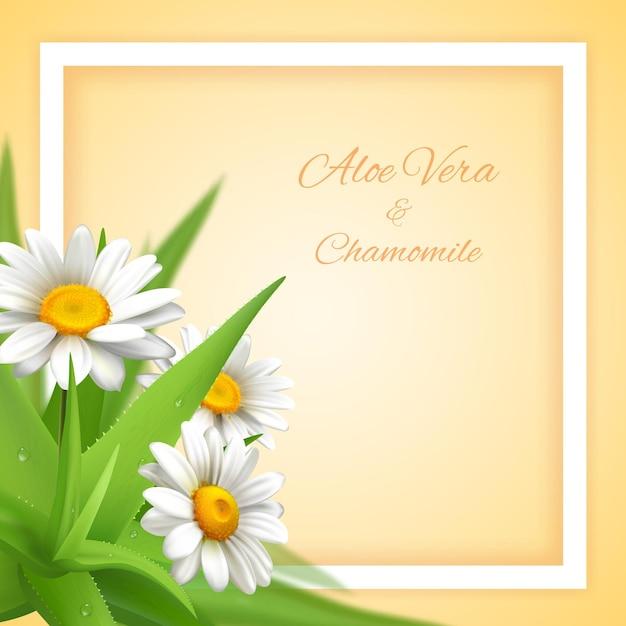 Aloe Vera Z Ozdobną Kwadratową Ramką Do Edycji Ozdobnego Tekstu Oraz Roślin I Kwiatów Darmowych Wektorów