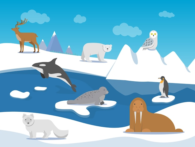 Arktyczny krajobraz z różnymi zwierzętami polarnymi Premium Wektorów