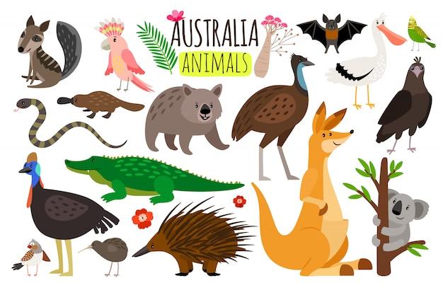 Australijskie Zwierzęta Premium Wektorów