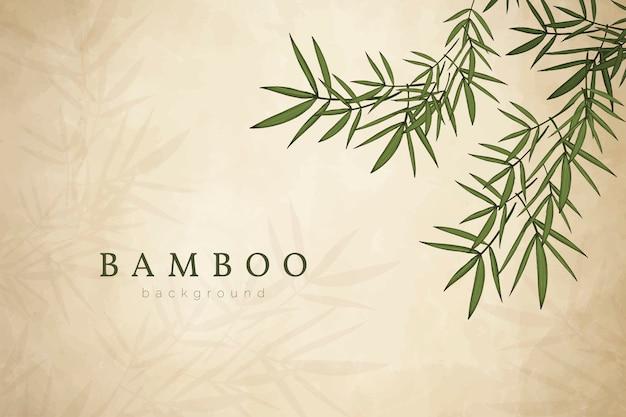Bambusowy Liścia Tło Darmowych Wektorów