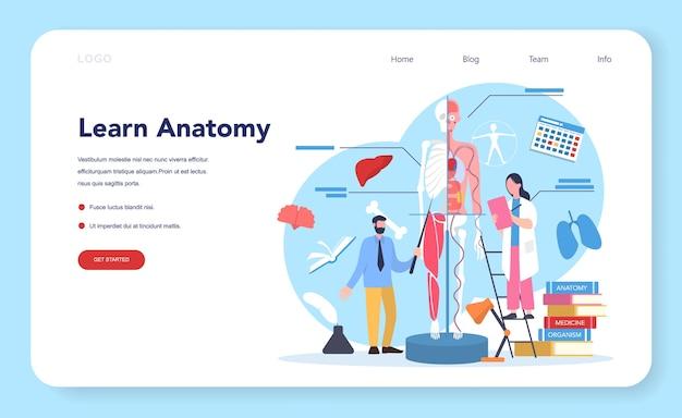 Baner Internetowy Lub Strona Docelowa Szkoły Anatomii. Badanie Wewnętrznych Organów Człowieka. Premium Wektorów