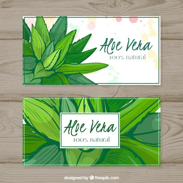 Banery Aloe Vera Akwarela Darmowych Wektorów