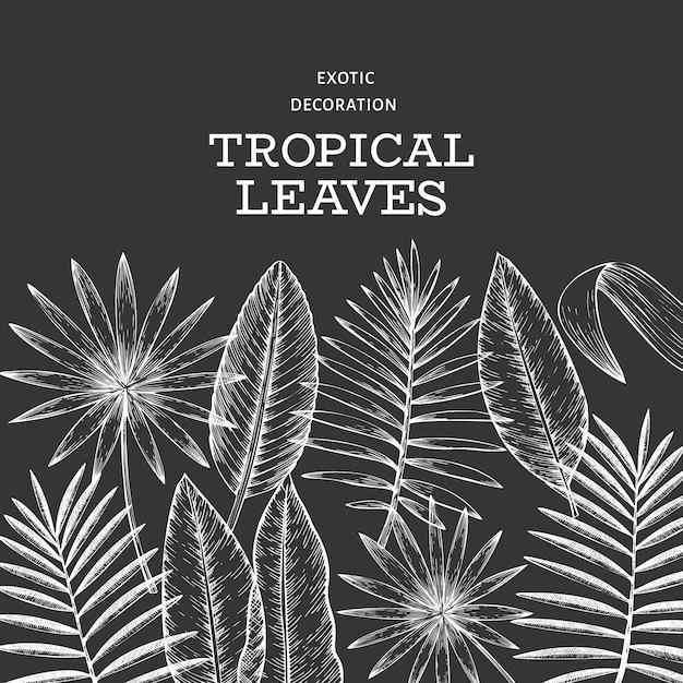 Banner roślin tropikalnych. ręcznie rysowane tropikalny lato egzotyczne liście ilustracji na tablicy kredą. liście dżungli, stylizowany liść palmowy. tło Premium Wektorów