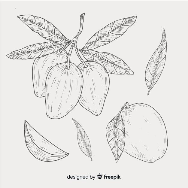 Bezbarwna ręka rysujący mangowy tło Darmowych Wektorów