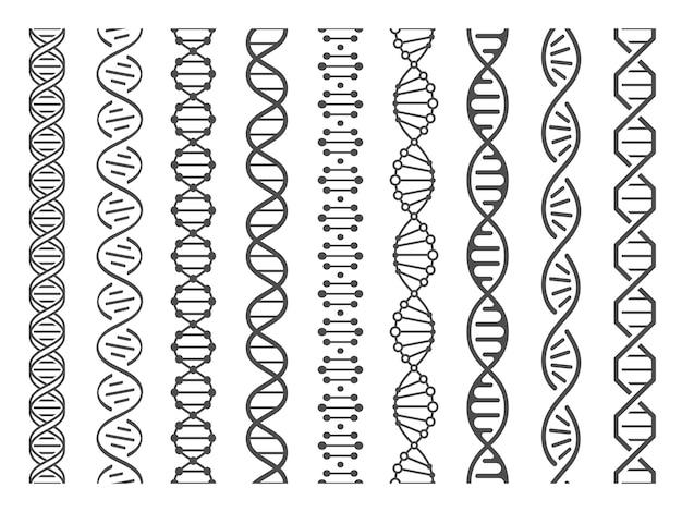 Bezszwowa Spirala Dna. Struktura Helisy I Struktura Genomu Oraz Ludzki Kod Genowy Zestaw Ilustracji Premium Wektorów