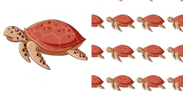 Bezszwowe Tło Z żółwi Morskich Darmowych Wektorów
