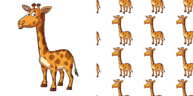 Bezszwowy Tło Projekt Z śliczną żyrafą Premium Wektorów