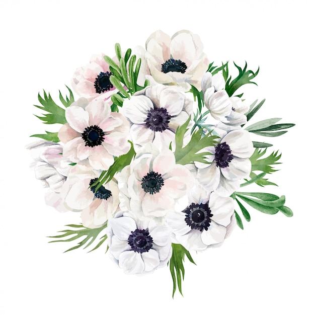 Bukiet Bujnych Zawilców, Widok Z Góry, Białe Kwiaty, Wyciągnąć Rękę Premium Wektorów