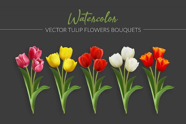 Bukiety Kwiatów Tulipan Akwarela Wektor Premium Wektorów