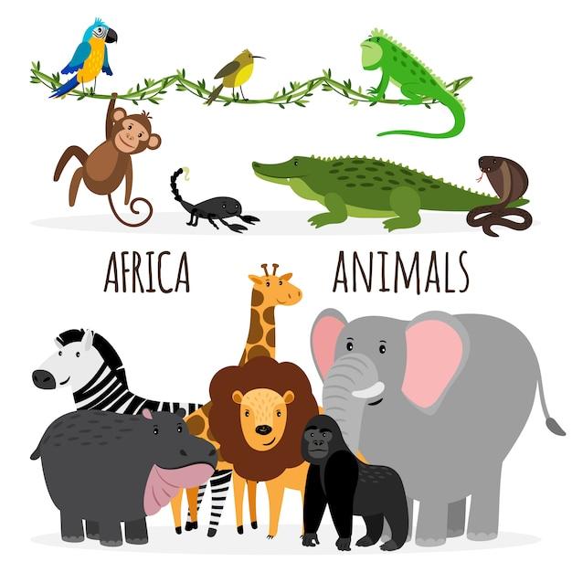 Cartoon Egzotyczne Zwierzęta Afryki Premium Wektorów