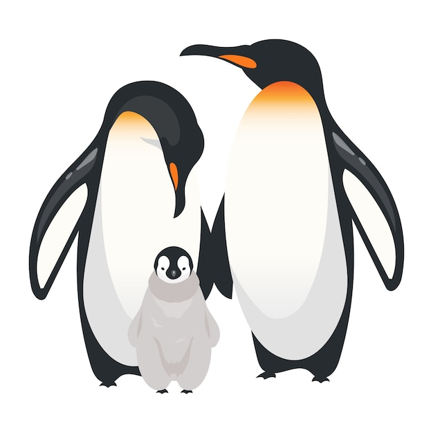 Cesarza Pingwinów Koloru Wektoru Płaska Ilustracja. Nielotne Dorosłe Ptaki Z Kurczakiem. Antarktyczne Gatunki Morskie. Grupa Stworzeń Arktycznych Na Białym Tle Postać Z Kreskówki Premium Wektorów
