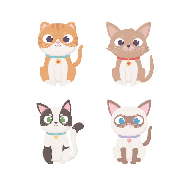 Charakter Małych Kotów Siedzących Z Inną Rasą, Zwierzaki Premium Wektorów