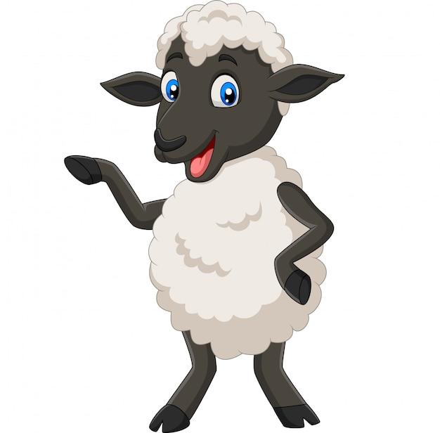 Cute Cartoon Owiec Stwarzających Odizolowane Premium Wektorów