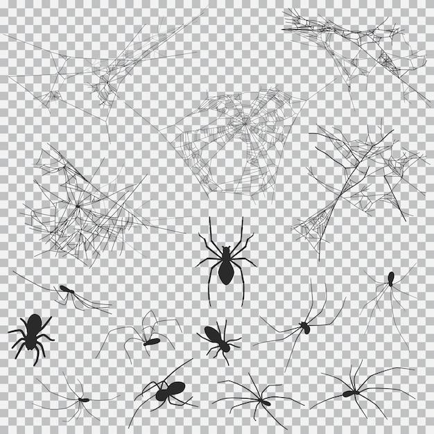 Czarna pajęczyna i pająk czarna sylwetka na halloween na białym tle Premium Wektorów