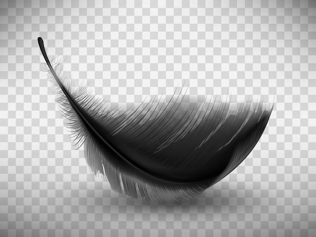 Czarne puszyste pióro z realistycznym cieniem Darmowych Wektorów