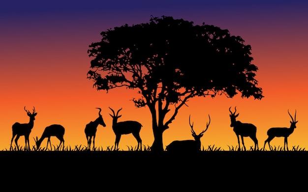 Czarne Sylwetki Dzikich Zwierząt Premium Wektorów