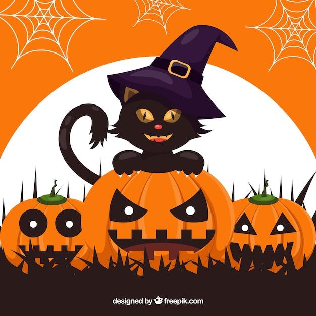 Czarne tło kota z dyni i czarownica kapelusz Darmowych Wektorów