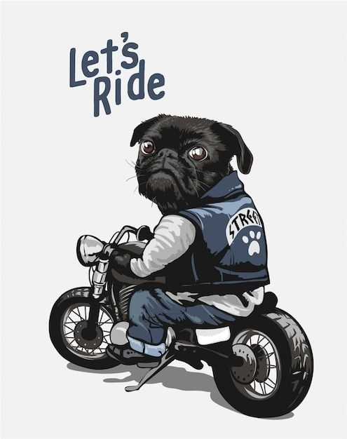 Czarny Mops Na Motocyklu Kreskówki Ilustraci Premium Wektorów