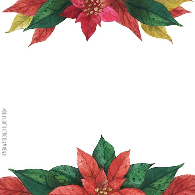 Czerwona Zielona Ramka Poinsettia Premium Wektorów