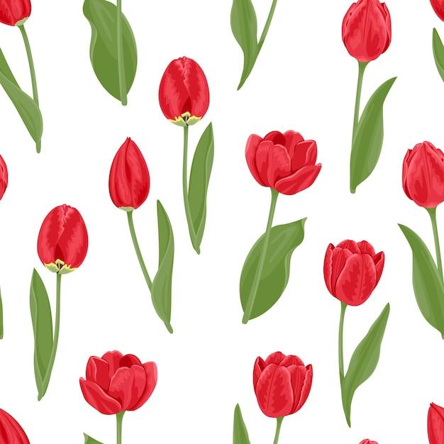 Czerwone Tulipany Wzór. Premium Wektorów